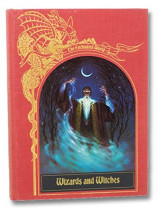 Wizards and Witches (The Enchanted World Series)